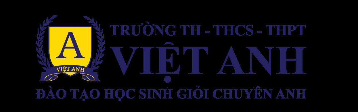 Logo Viet Anh Oct 2020
